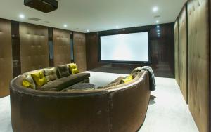 luxurious at home cinema